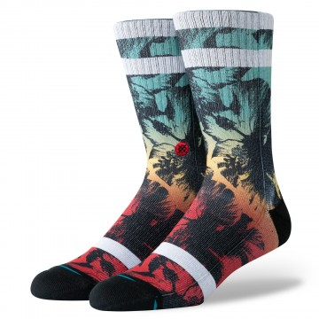 Chaussettes Hibiscus burn Stance