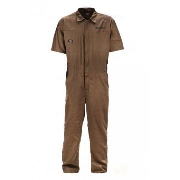 Salopette Narrowsburg Dickies